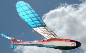 Old Time Gliders